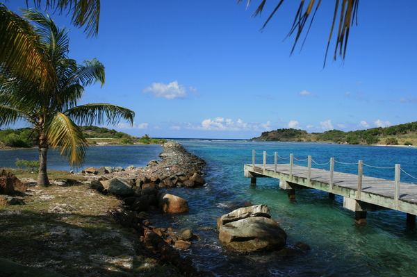 Study abroad - Virgin Islands